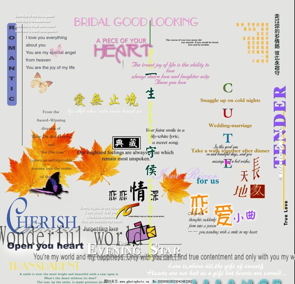 字体字体字艺术v字体字体婚纱设计艺术英文广告设计的学费多少钱图片