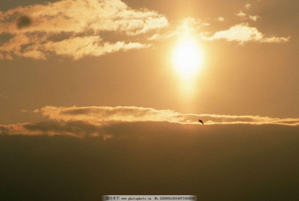 光照天空 太阳 阳光 强光 飞鸟 云朵 自然风景 自然景观 摄影 350dpi