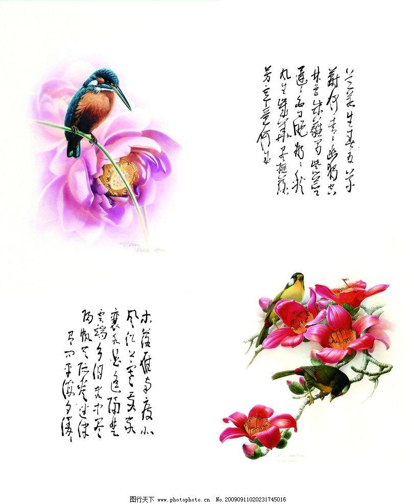 鹊之专声 喜鹊 花鸟 诗词 移门图库 花边花纹 底纹边框 设计 72dpi