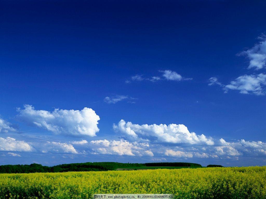 蓝天白云映草地 草原黄花 野花 自然风景 4769×3750 300dpi jpg