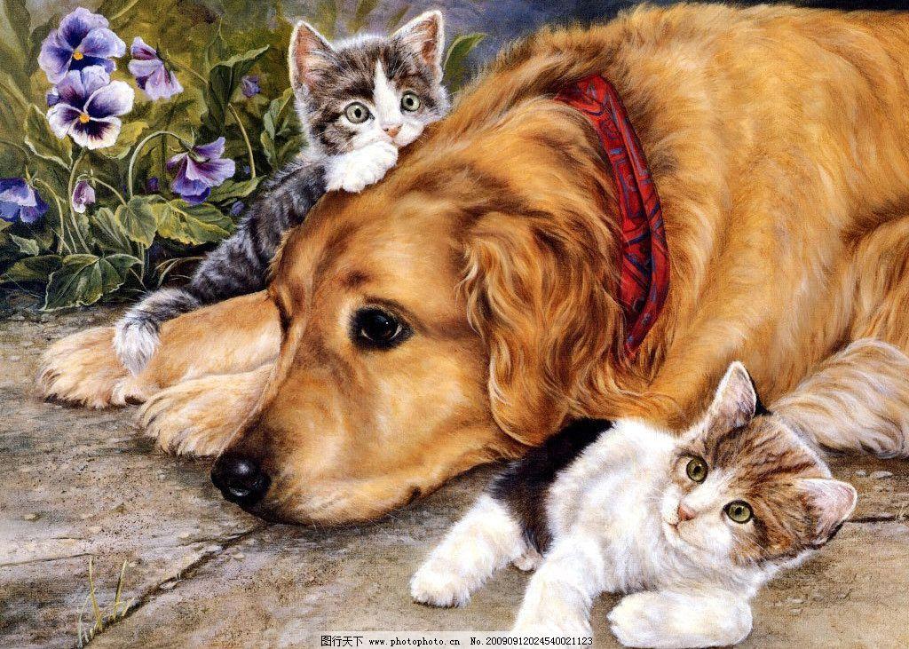 手绘猫狗图图片