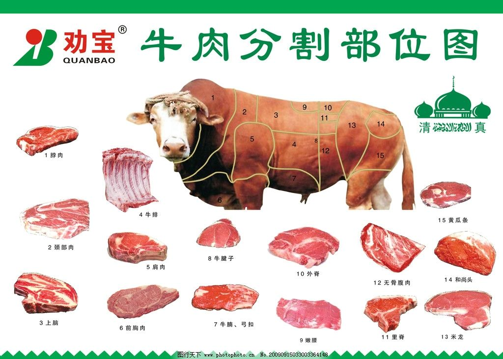 牛肉分割部位图图片