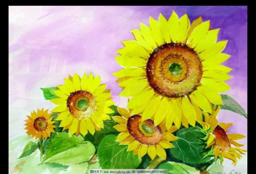 向日葵花 花朵 手绘 书画作品集 绘画书法 文化艺术 设计 150dpi jpg