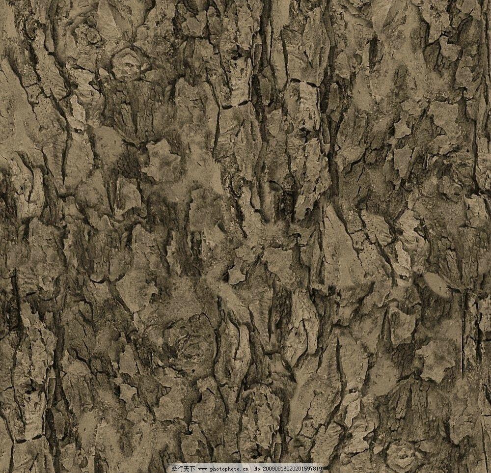 树皮木纹纹理材质贴图图片