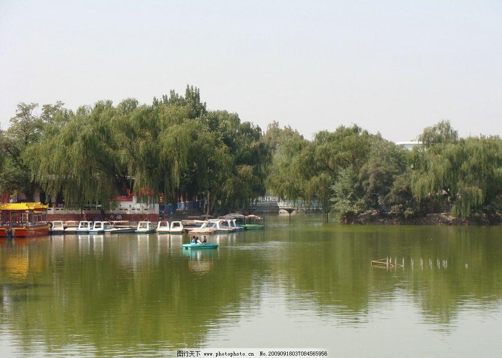 湖垂柳 人工湖 游船 摄影 塞外 家乡风景 山上风景 生活素材 生活百科