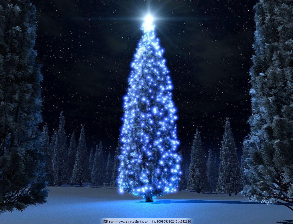 圣诞树 松树 灯光 夜晚 雪景 自然风景 摄影图库 jpg 设计 3d设计 96