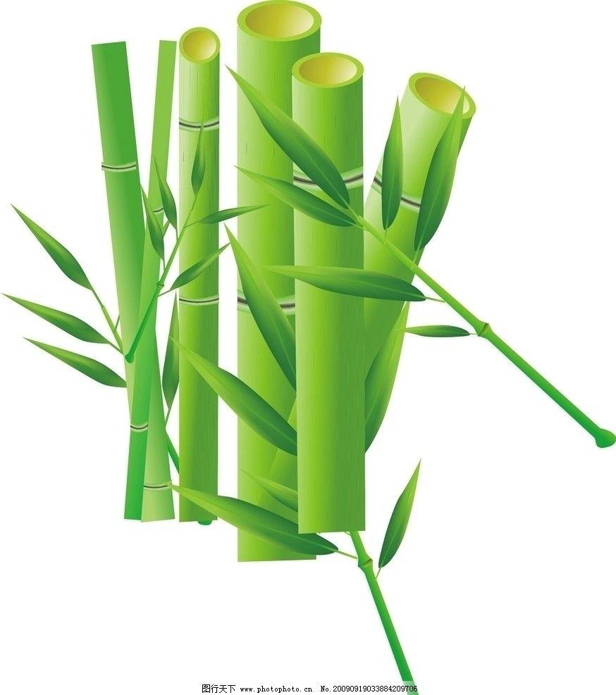 竹子 竹叶 竹竿 渐变 线条 矢量素材 其他矢量