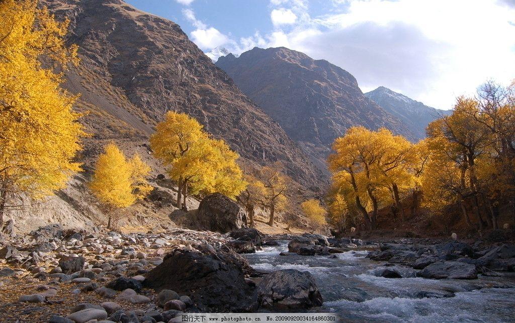 溪流 小溪 黄叶 树林 石头 雪山 天下美景 自然风景 旅游摄影 300dpi