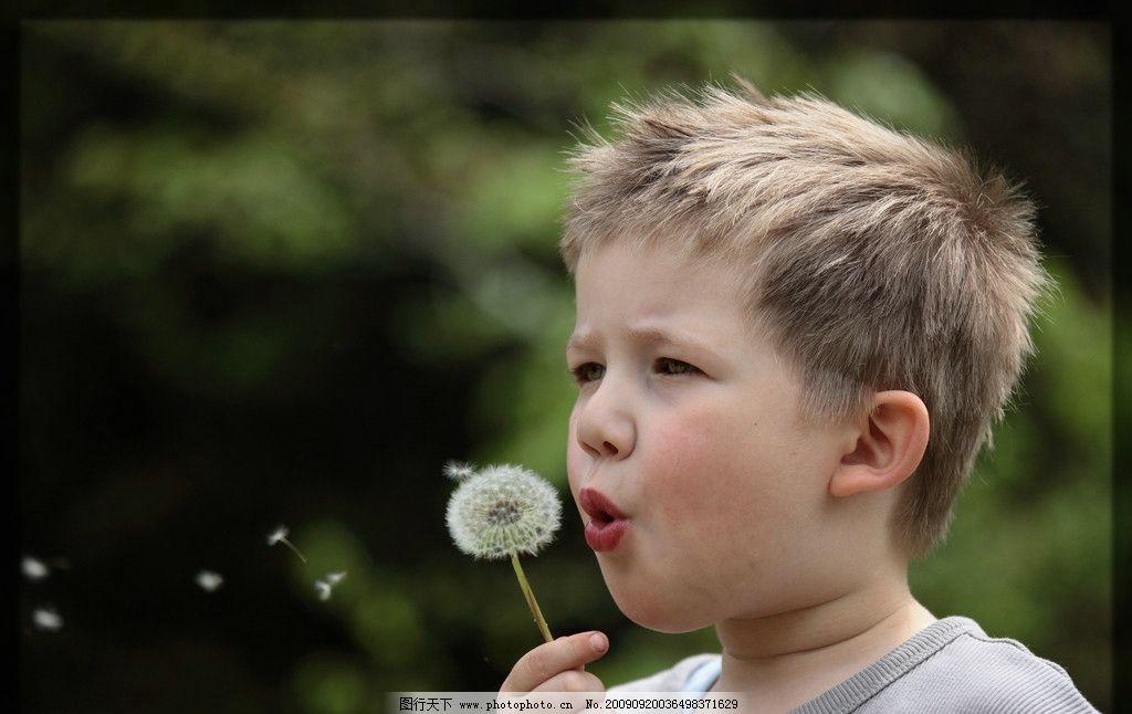 小朋友 可爱 蒲公英 吹 野外 小男孩 儿童幼儿 人物图库 摄影 350dpi