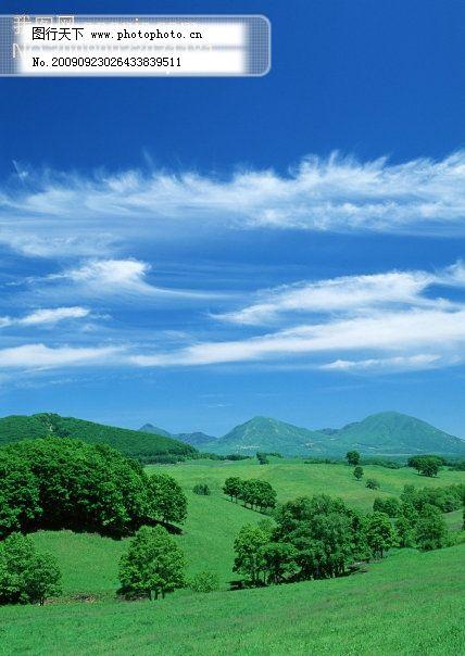 白云背景 蓝天白云草地图片 蓝天白云绿草 蓝天 蓝天草地 蓝天绿地 云
