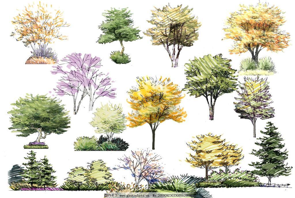 植物 手绘植物 树 植物素材 园林素材 源文件
