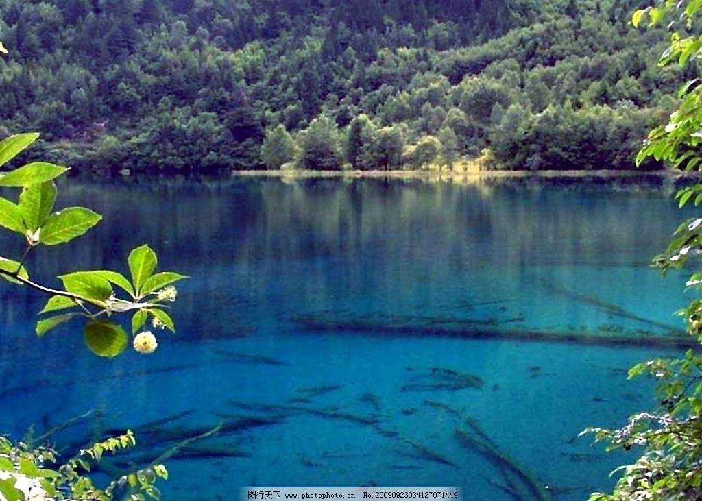 山水图 九寨沟 画 书 自然风景 旅游摄影 100dpi jpg