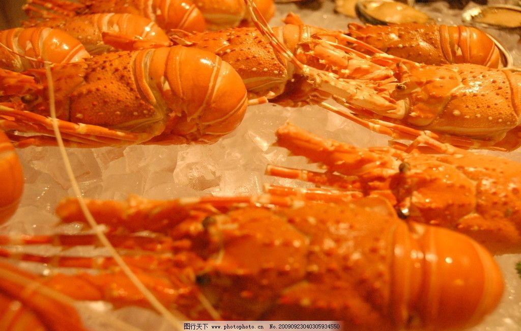 海鲜 龙虾 海产品 海味 西餐美食 餐饮美食 摄影