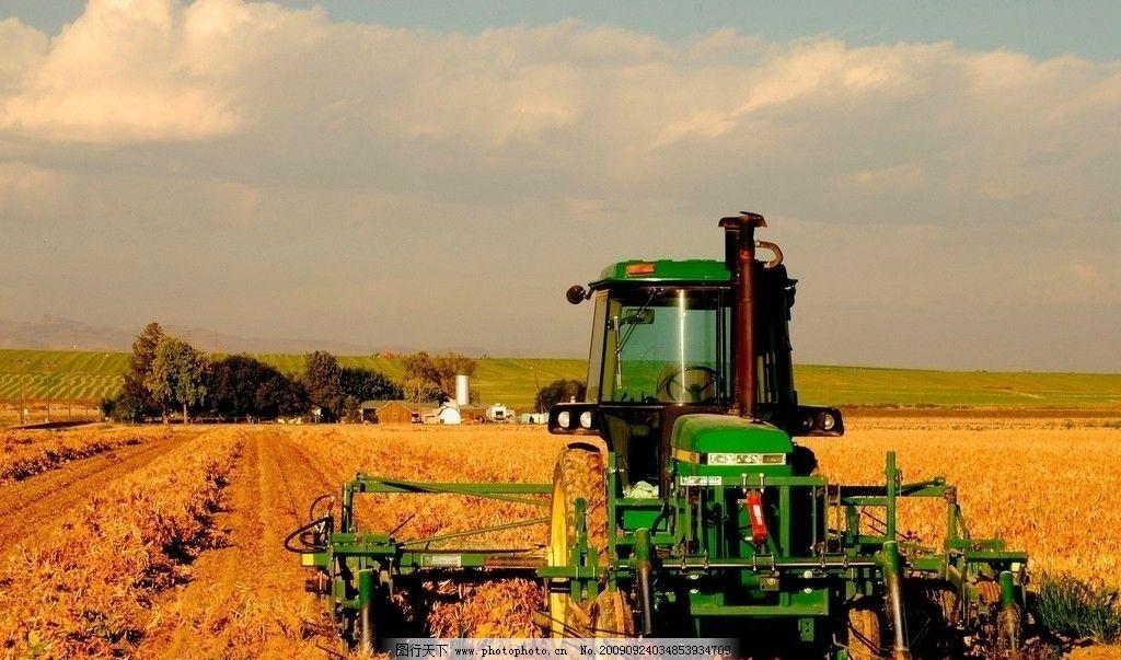 自然风景 景观 山水 树木 优雅景观 秋天 麦穗 麦地 收割机 麦子 摄影
