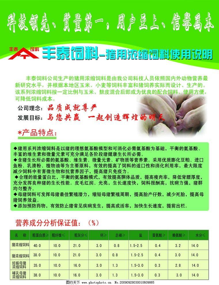 丰泰饲料宣传彩页 猪 海报设计 广告设计模板 源文件 300dpi psd